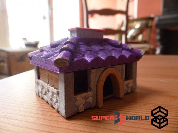 Maison de Pépé le Ramollo (Zelda Link's Awakening)